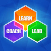 Learn, coach, lead in hexagons, flat design — Stock Photo