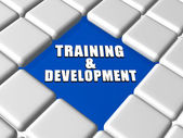 Training and development in boxes — Stock Photo