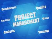 Проект управления и бизнеса понятие слова в шестиугольники — Стоковое фото