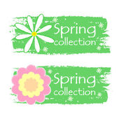 Spring collection with flowers signs, green drawn labels — Stock Photo