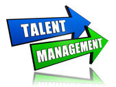 Talent management in arrows — Stock Photo
