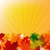 Sunburst sonbahar sınır — Stok Vektör