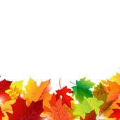 Frontera de otoño — Vector de stock