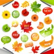 Autumn Collection Sale Elements With Leaves — Stock Vector