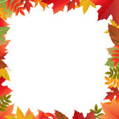 Color Autumn Frame — Stock Vector