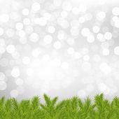 銀のボケ味を持つ fir 木枠 — ストックベクタ