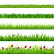 Big Green Grass And Flowers Set - Stock Vector