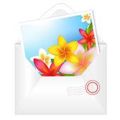 花カードと封筒を開く — ストックベクタ