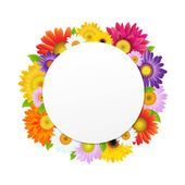 Colorful Gerbers Flower Banner — Vettoriale Stock