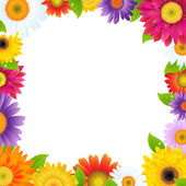 Colorful Gerbers Flower Frame — Stock Vector