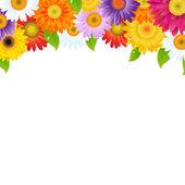 Gerbers fiore cornice con bokeh — Vettoriale Stock