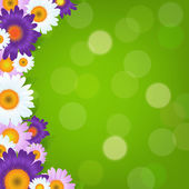 Colorful Gerbers Flowers Frame With Green Bokeh — Stockvektor