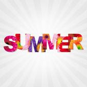 Color Gerbers Summer Banner — Stock Vector