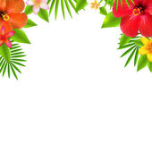 Tropical Flowers Border — Stock Vector