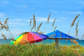 Beach Umbrellas — Stock Photo