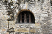 Fortified Window — Stock Photo