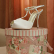 Wedding shoes — Stock Photo #12631360