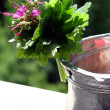 Stock Photo: Water jug decorated with geraniums