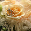 Beautiful wedding bouquet and rings. — Stock fotografie