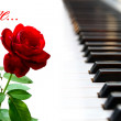 Rose and piano — Stockfoto