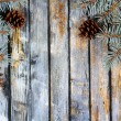 Stock Photo: Christmas fir tree with pinecones on a wooden board