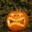 Halloween pumpkin — Stock Photo #13472468