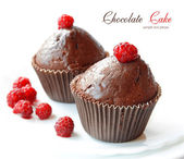 Chocolate fruitcakes — Stock Photo