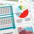 Business Report in Charts with Sales Statistics — Stock Photo