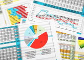 Business Reports in Color Charts — Stock Photo