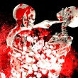 Stock Photo: Bloody Fighting Skeletons