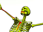Cartoon Skeleton With Blood — Stock Photo