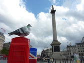 BT Artboxes In Londons Trafalgar Square 19th June 2012 — Stock Photo