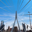 Erasmusbrug - Stock Photo
