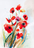 Poppy - watercolor — Stock Photo