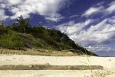 Baltic Dunes — Stock Photo