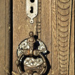 Doorknocker — Stock Photo #17010711