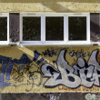 Graffiti — Stockfoto #17011303