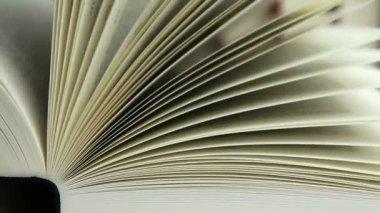 Book 3 — Stock Video