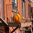 Halloween decoration — Stock fotografie #32711683