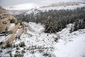 Snow in Jerusalem — Stock Photo