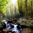 Stock Photo: Fall in Smoky Mountains
