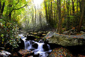 Fallen sie in den smoky mountains — Stockfoto