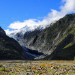 Franz Josef Glacier — Stock Photo