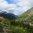 Train from Skagway Alaska to White Pass — Stockfoto #30823907