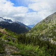 Stock Photo: Train from Skagway Alaskto White Pass