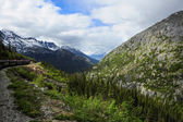 Train from Skagway Alaska to White Pass — Stock Photo