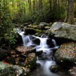 Fall Colors in the Smoky Mountains — Stock Photo