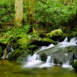 Stock Photo: Water Fall Great, Smoky Mountains National Park