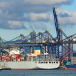 Trading seaport with cranes, cargoes and the ship -  