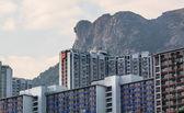 Hong kong oprawy krajobraz lew skale — Zdjęcie stockowe
